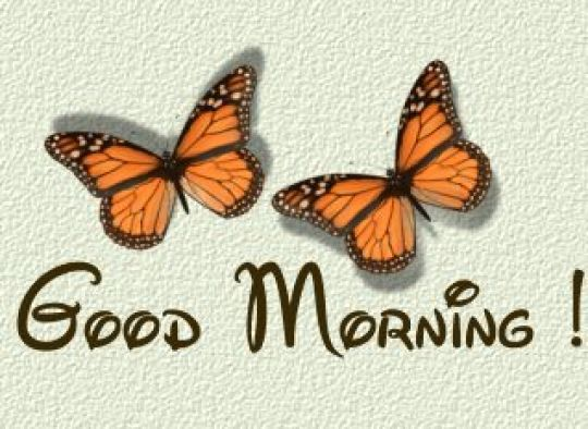 funletters.net/14 Greeting to Say Good Morning