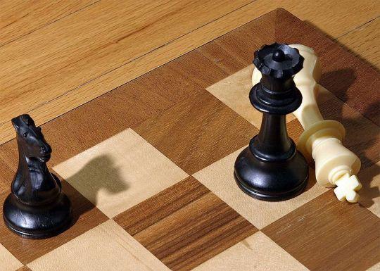 Hasil gambar untuk gambar skak mat