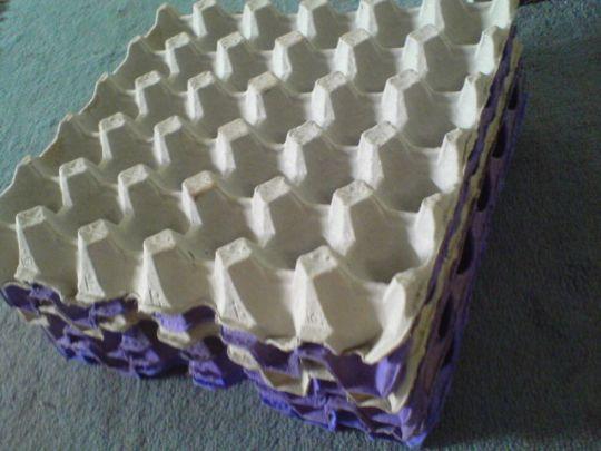 Membuat Pot Cantik Dan Unik Dari Kardus Telur Tutorial Lain Lain Kesekolah Com