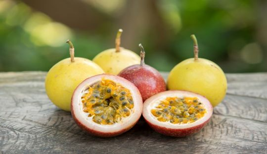 manfaat-sehat-buah-markisa-untuk-tubuh