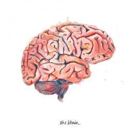 tahukah-kamu-setengah-bagian-dari-otak-akan-tetap-terjaga-saat-kamu-tidur-di-tempat-baru-yang-belum-pernah-kamu-datangi