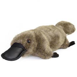saat-tidur-platypus-melakukan-gerakan-yang-sama-dengan-saat-dia-sedang-mencari-mangsa-ini-kemungkinan-besar-untuk-menutupi-bahwa-dia
