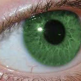 hanya-2-dari-populasi-orang-di-dunia-yang-memiliki-warna-mata-hijau