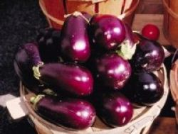 Terong, Antioksidan dan Pengikat Zat Besi