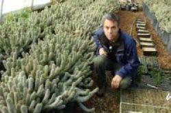 Keliling Dunia Berburu Obat Herbal