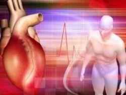 Kolesterol Ditakuti, Tetapi Dibutuhkan