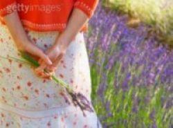 Manfaat Lavender bagi Kesehatan