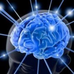 Otak Manusia Hanya Mampu Lakukan 2 Tugas Sekaligus