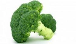 Manfaat Brokoli untuk Pengobatan Kanker Payudara