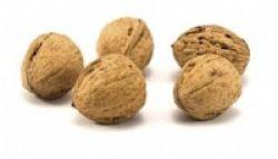 Peneliti: Kacang Dapat Turunkan Kolesterol