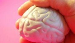 Memindai Otak Bisa Mendeteksi Dini Autism