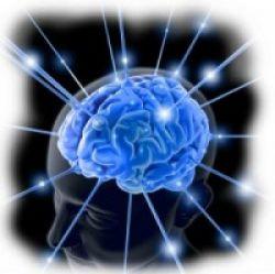 Mengenali Cara Kerja Otak untuk Memudahkan Belajar
