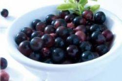 Acai Berry Cegah Penuaan Dini