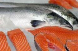 Bahaya Merkuri pada Seafood