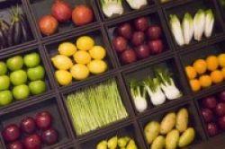 Diet 2 Hari Ampuh Tangkal Kanker Payudara