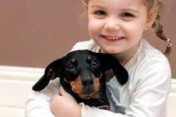 Hindari Anjing dengan Virus Rabies