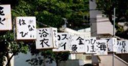 Buruan, Raih S-3 di Kyoto University!