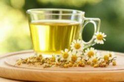 Deretan Herbal Penuntas Keluhan Haid