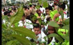 Warga bagi-bagi Tanaman Peringati HCPSN 2010