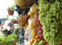 Mengenal Makanan Pencegah Kanker