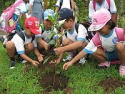 Murid TK Pelajari Hortikultura Gaya Eropa