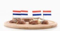 Seperti Apa Budaya Ngekos di Belanda?