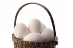 Telur Tak Mengandung Banyak Kolesterol