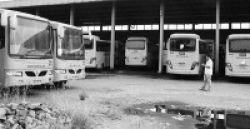 40 Bus Sekolah Dioperasikan di Jakarta