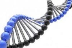 Ditemukan, 5 Gen Terkait Alzheimer