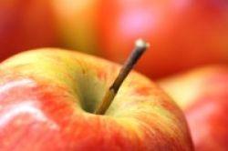 Kulit Apel Picu Pertumbuhan Otot