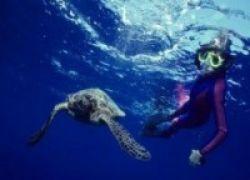 SST... Pengidap Asma Bisa Naik Gunung, Bahkan Snorkeling Lho