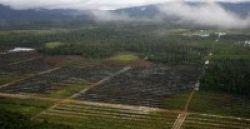 Unas-WWF Gelar Workshop Heart of Borneo
