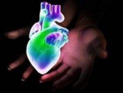 Penyakit Jantung Bawaan Tak Murni Faktor Genetik