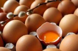 3 Telur Seminggu Tingkatkan Kanker Prostat