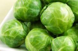 Sehatnya Makan Kol Brussel