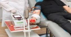 16 Mitos dan Fakta Donor Darah