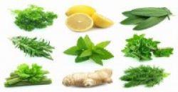 Kiat Aman Konsumsi Herbal