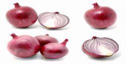 8 Makanan Anti Kanker Kolorektal