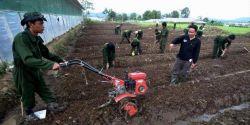 Lulusan Agribisnis Justru Banyak Dicari