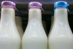Simak Cara Bijak Menyimpan Susu