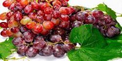 Buah Anggur Bikin Badan Langsing