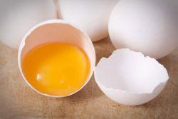 Kuning Telur Tidak Sehat, Kata Siapa?