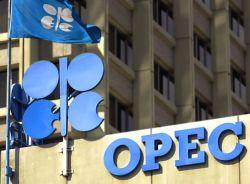 Wah OPEC Menawarkan Beasiswa Juga Loh! Ada yang Mau?