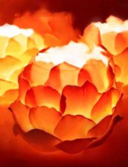 Indahnya Lampion Bunga Teratai