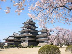 Ikuti Tawaran Beasiswa ke Jepang Yuk!!