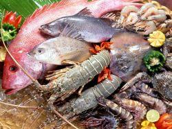 Ingin Konsumsi Ikan dengan Benar? Perhatikan Ini