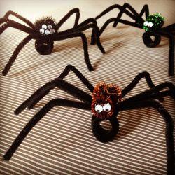 Yuk Membuat Cincin Tarantula!