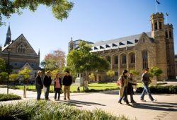 Mau Belajar Bisnis Gratis di Australia? Check This Out!
