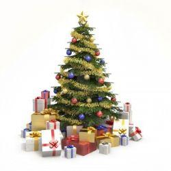 Kenapa Pohon Cemara sebagai Lambang Natal? Yuk Cek Sejarahnya