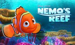 Berpetualan di Bawah Laut Bersama Clown Fish di Nemo'S Reef